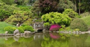 most beautiful and fantastic garden