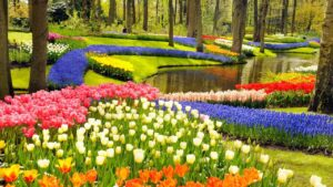 most fantastic and stunning garden