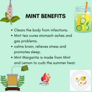 Medicinal Benefits of Mint.