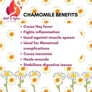 Medicinal Benefits of Chamomile