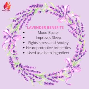 Medicinal Benefits of Lavender