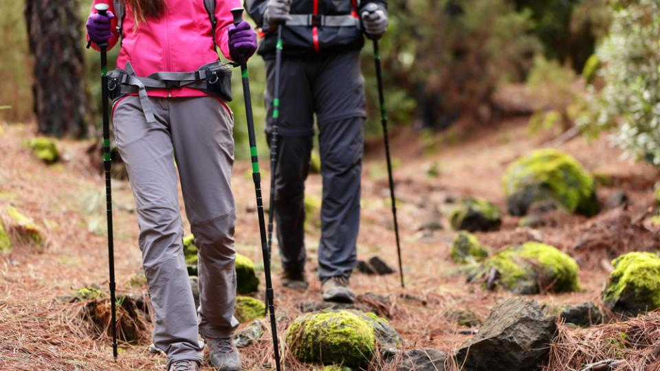 Best hiking sticks/writetoaspire