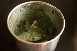 blended green sauce- write to aspire