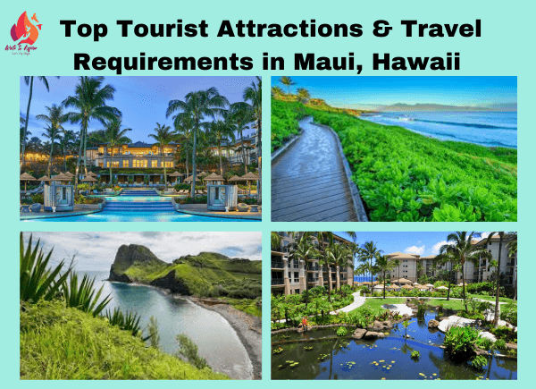 top tourist attractions in Maui- write to aspire