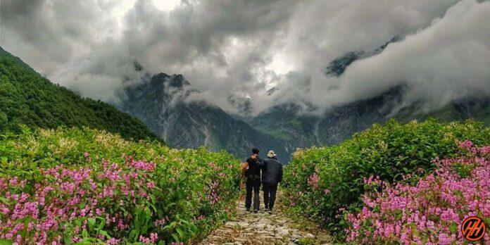 2021 Flower Valley Guide Travel Guide Uttarakhand - write to aspire